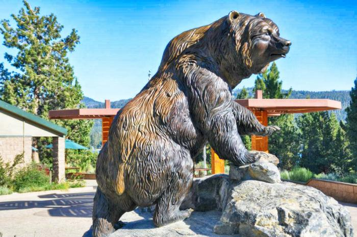 Help Bring the Big Bronze Bear to Upper Moreland